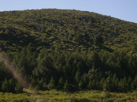 Campo De Sierra, En El Corazon De Las Sierras De Las Animas