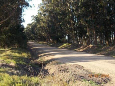 Campo Agricola Con Costa Al Arroyo Garzon