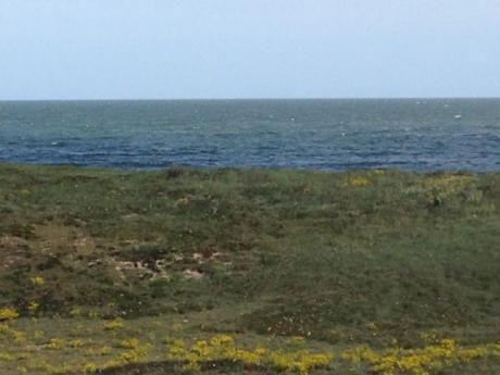 Terreno Frente Al Mar