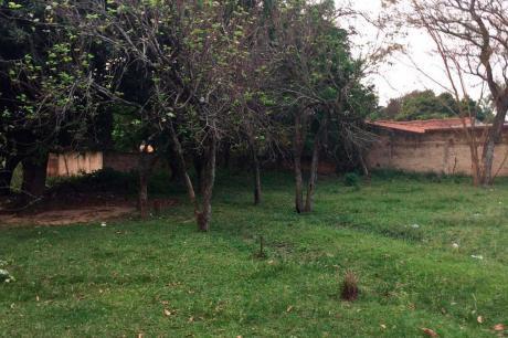 Terreno En Luque, Central