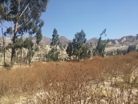 Terrenos En Centro