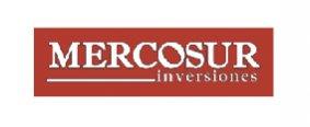 Mercosur Inversiones