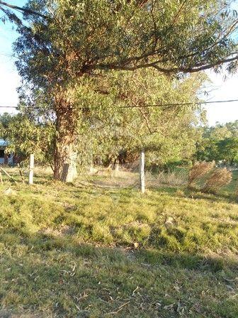 Terreno En Bella Vista