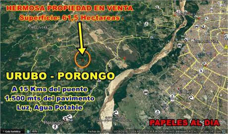En El Urubo Hermosa Propiedad En Venta 61,5 Has ($us. 4,3 X M2)