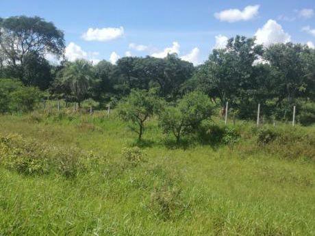 Terreno En Venta De 5 Hectareas  Sobre Carretera A Camiri