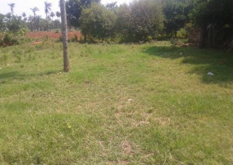 Hermosos Terreno De 1ha, 603m2 En Mbatovi.