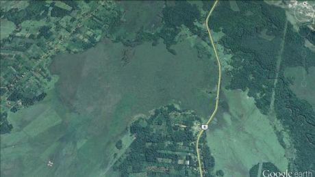 Campo De 42 .391m2 En Cnel.oviedo, Sobre Ruta Asfaltada, Camino A Carayao