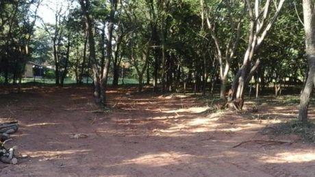 Remato 8 Terrenos Juntos O Separados A 5 Cuadras De Ruta  Luque-aregua  0981-728189