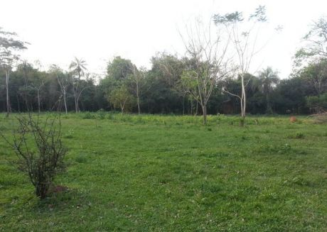 Vendo Terreno En Capiata