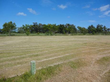 Real De San Carlos Village & Golf  Lote 19
