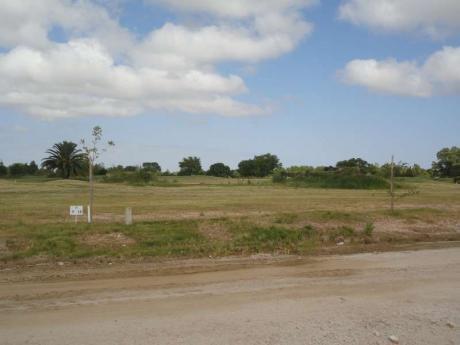Real De San Carlos Village & Golf  Lote 10