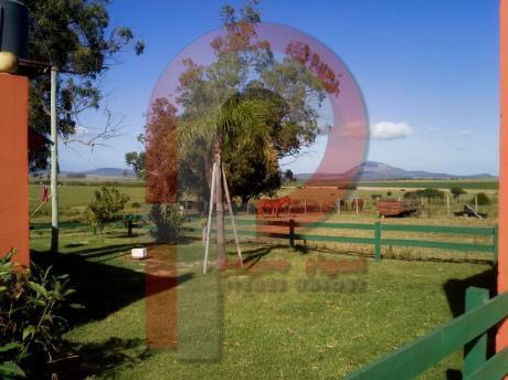 Campo Ganadero A 30 Km De Punta Del Este