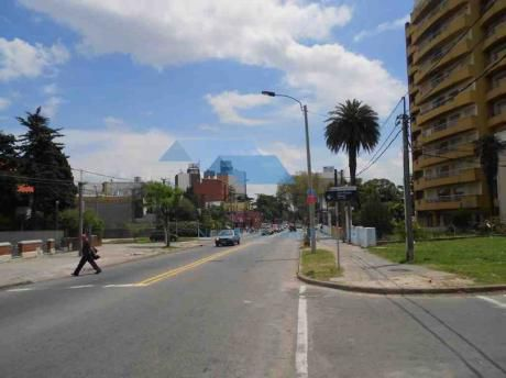 Local Y Casa - 660 M2 Terr. 470 M2 Cons. Frente 20 Mts, Impecable
