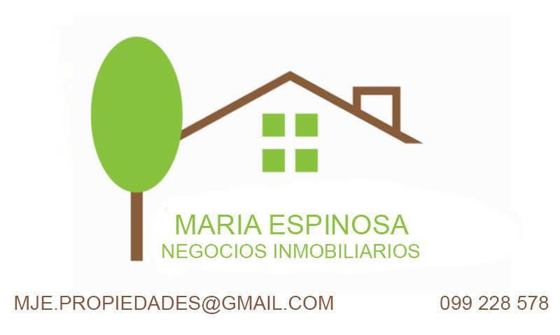 María Espinosa negocios inmobiliarios