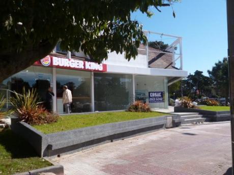 Local - Oficina Carrasco Sur