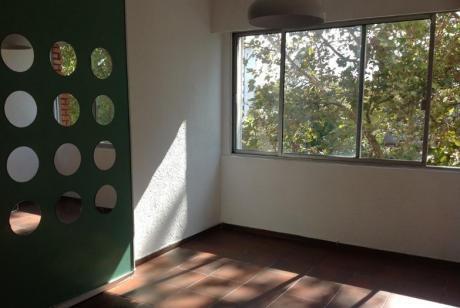 Apartamento 1 Dormitorio Muy Luminoso, Pocitos, Bajos Gastos Comunes