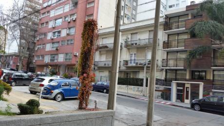 Roque Graseras 1 Dormitorio Con Cocina Definida Y Terraza-