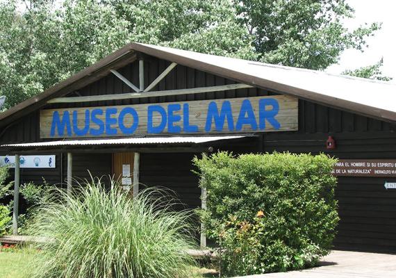 museo-del-mar-el-tesoro.jpg