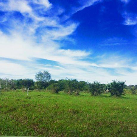 Terreno En Surubii 1500 M2