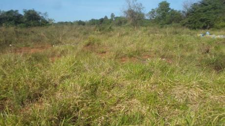 Vendo Terreno En Luque Mora Cue