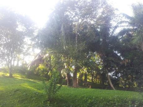 Hermoso  Terreno El Urbanizacion  Ecologica  El Bosque