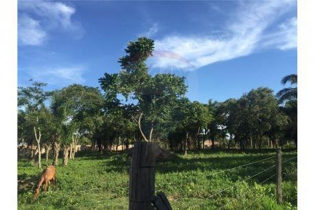 Terreno En Venta   Zona Urubo!!! Camino A Porongo Y Bio Centro Guembe