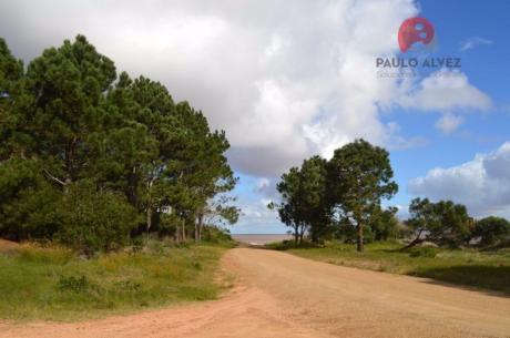 Terreno En Punta Colorada ( Te 420 )