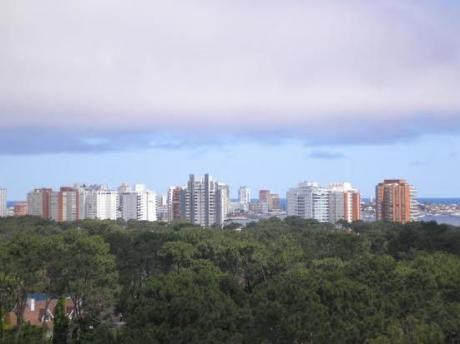 Apartamentos En Cantegril