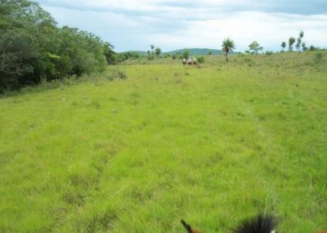 Paraguari - Caapucu  A 2 Kms Del Asfalto Vendo 470 Has  Y O 940 Has De Terreno