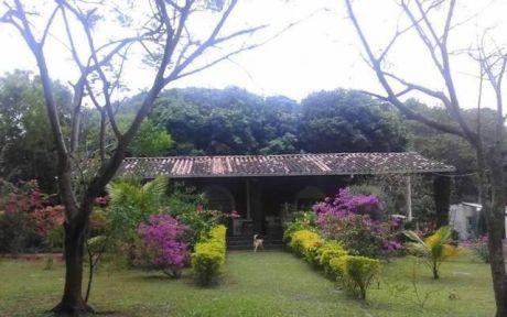 Quinta-granja De 10 HectÁreas, Caacupe-tobati, Cordillera!!!