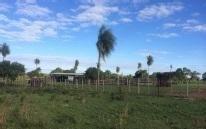 Vendo En Quiindy Dto De Paraguari 400 Has En Oferta  A 100 Kms De Asuncion