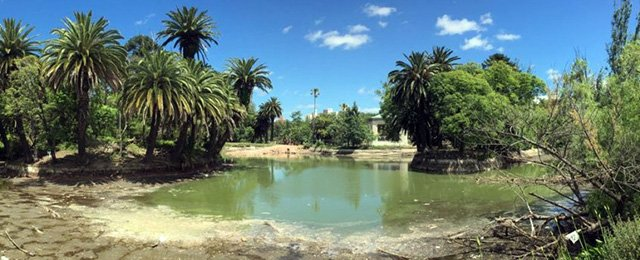 El Parque Rodó en plena renovación