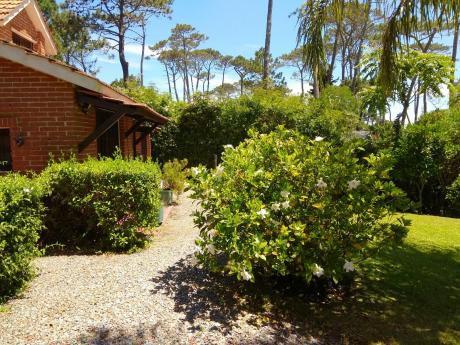 Hermosa Casa De 2 Plantas En Pinares Parada 32