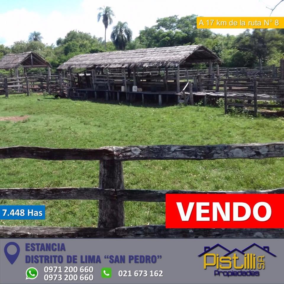 "VENDO V-034 Estancia 7.448 Has - Distrito de Lima ""San Pedro"""