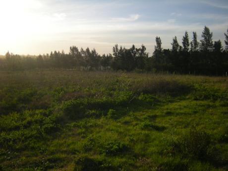 Perimetral Y Mendoza, Zona Rural