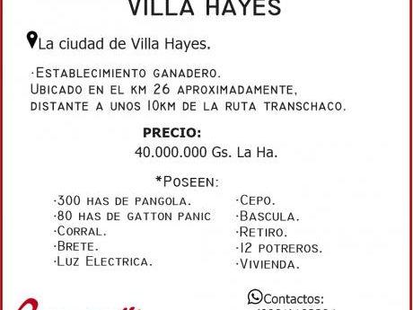 Vendo 600 Has En Villa Hayes.