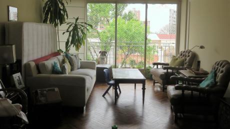 Impecable Apartamento 3 Dormitorios En Pocitos
