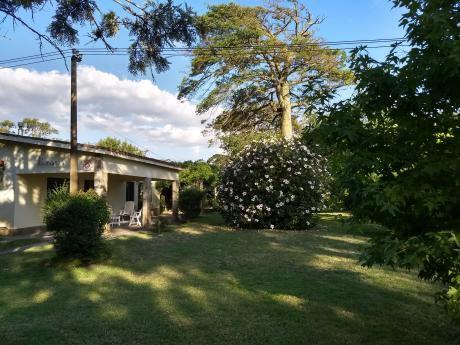 Casa 4 Dorm Con Gran Jardín Arbolado A Pasos De La Playa. 1300 M2 Terreno