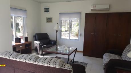 3 Dormitorios -2 Baños- Con Renta- Inmobiliaria Calipso