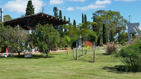 Espectacular Chacra Con 2 Casas, 10000 M2 Terreno