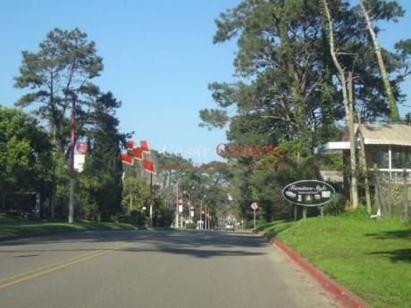 Locales Comerciales En San Rafael
