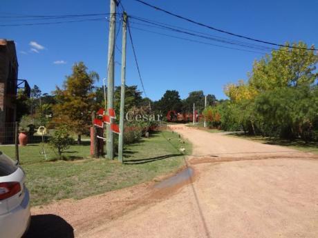 Terrenos En Pinares