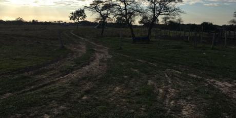 De Ocasión Vendo32 Hectáreas De Terreno Sobre Carretera En El Urubo - Santa Cruz De La Sierra