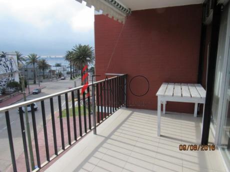 Apartamento En Península 1 Dormitorio Con Balcón