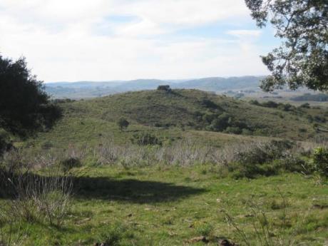 Campo A Pocos Kms. De Pueblo Eden