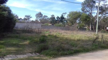 Terreno Pinar Sur Apto Para 2 Propiedades De 986 M2