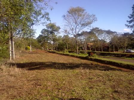 Aproveche Esta Oportunidad... Sobre Ruta VI En Hohenau - Itapúa