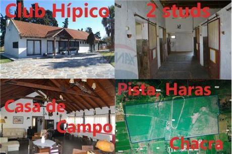 Chacra De 127 Hectáreas 4 Casas 2 Studs Y Pista