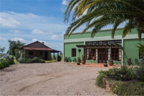 San Jacinto - Olivos Y Hotel Boutique - 34 Hts.