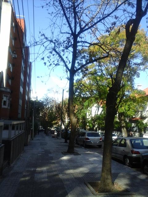 Alquiler De Apto 1 Dormitorio En Calle Tranquila.